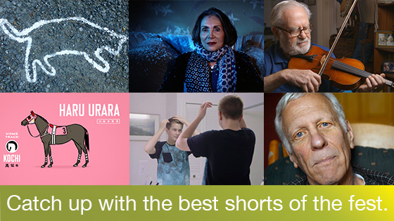 Image from Member Screening: The Hottest Shorts From Hot Docs 2016