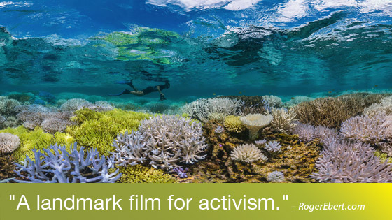 Image from Films Changing the World: Chasing Coral